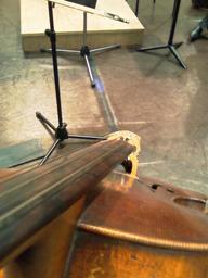 Моя виолончель