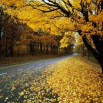 Осень как начало