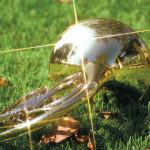 Валторна на траве